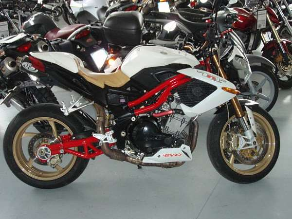 Benelli TORNADO NAKED TRE 1130 SPOT EVO